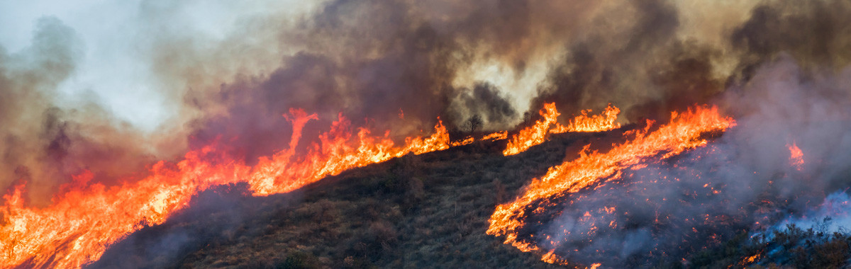 Photo of Woolsey Fire